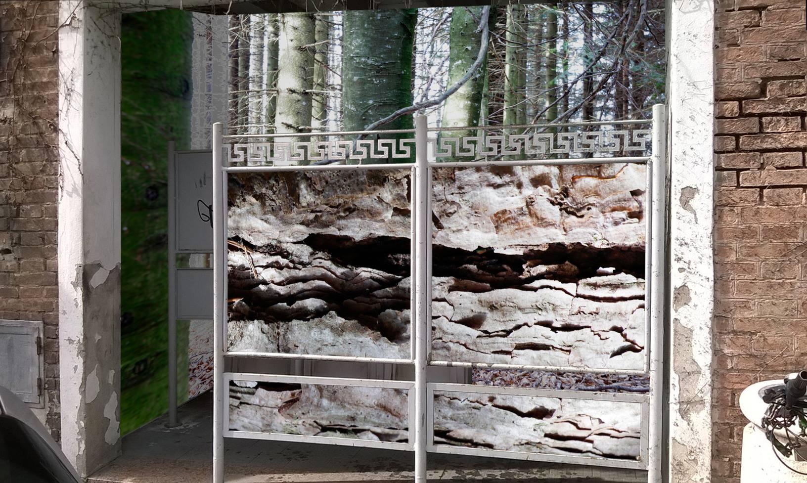 IL RICHIAMO DELLA NATURA, installazione fotografica di Giulio Crosara, Circuito Off Fotografia Europea Vespasiano dei Chiostri di S. Domenico, via Dante Alighieri