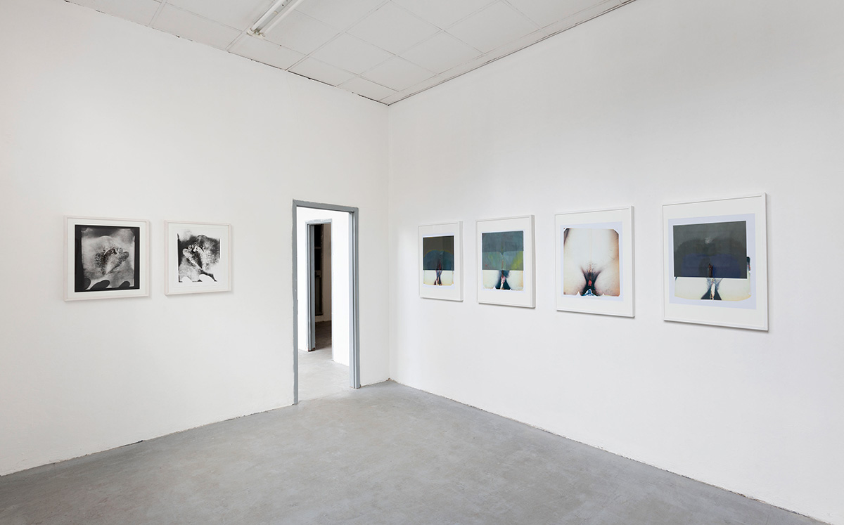 Paolo Gioli, Installation view at Peep-Hole, 2016 From left: Vulva, 2004, black and white print, enlargement of a contact print from a paper negative, Vulva, 2004, black and white print, enlargement of a paper negative exposed by reflection, Naturae, 2009, Polaroid 20x24'', acrylic, lens photograph Photo ©2016 Andrea Rossetti