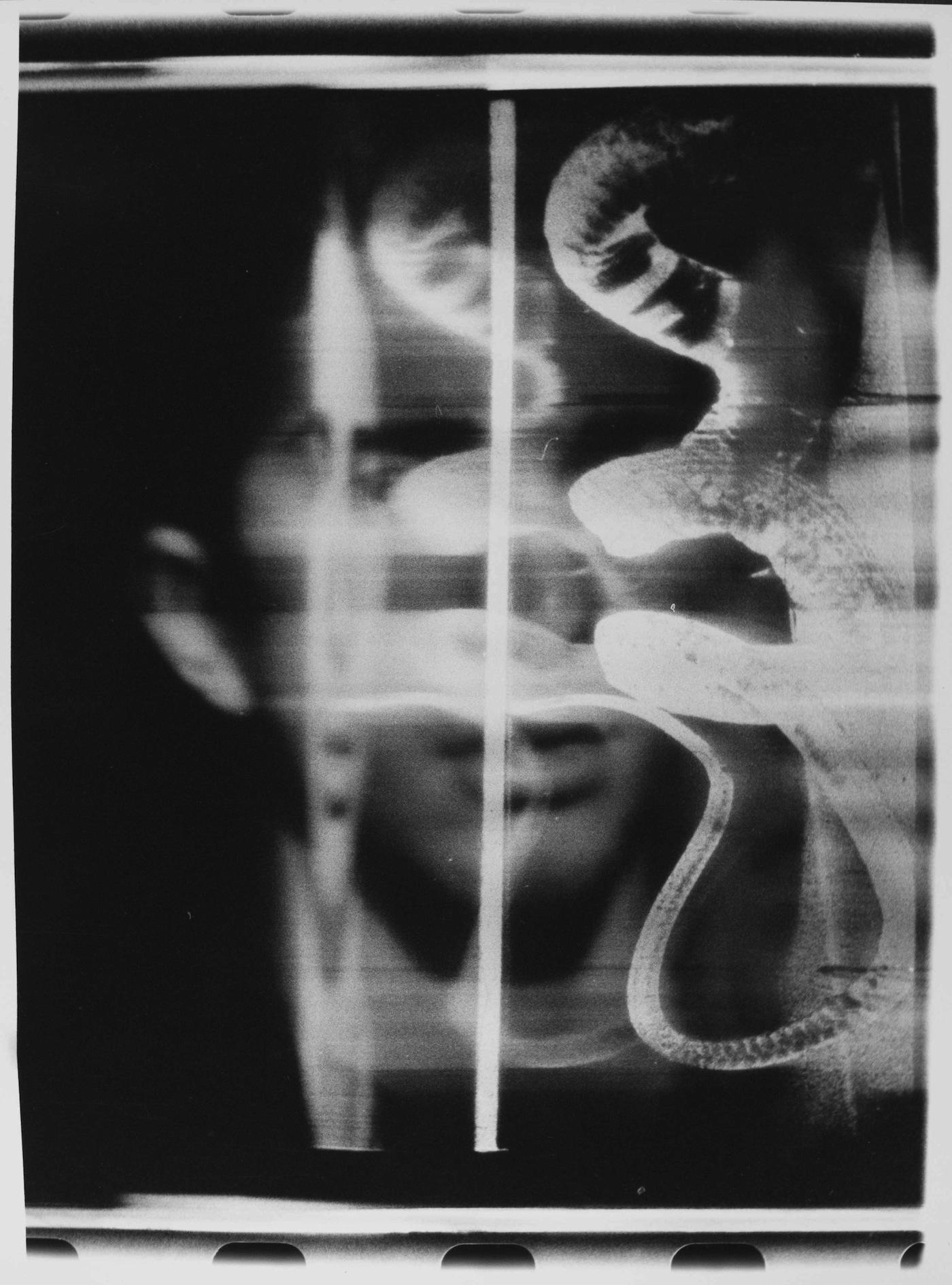Paolo Gioli Il volto dell'Epeira, 1992 Misure variabili, Proprietà dell'autore
