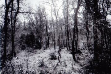 Pierpaolo Miccolis, Punto nero lll, Polaroid, 12x9 cm, 2016