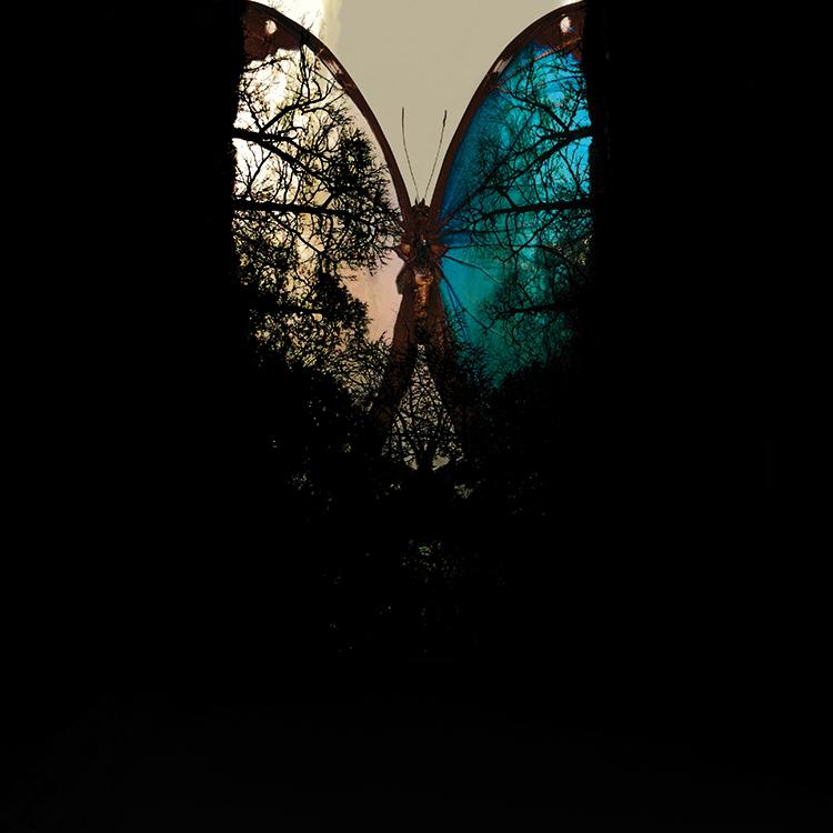 Giorgio Bormida, The Mind, Inside XIV
