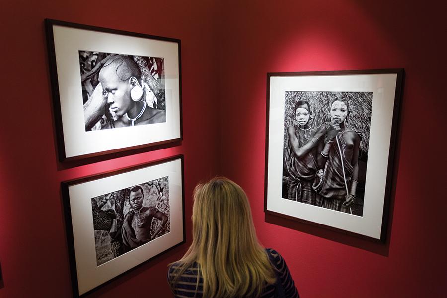 Veduta della mostra Genesi di Sebastião Salgado. Foto: Andrej Peunik