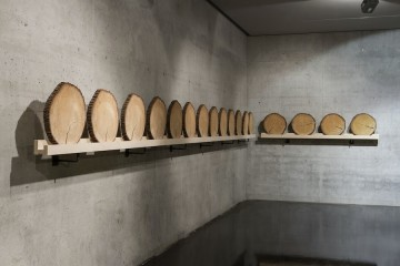 Xavier Veilhan, Cedar, 2016, wood, 10 m installation line Courtesy Andréhn-Schiptjenko © Veilhan, ADAGP Paris, 2016 Photo © Simon Perathoner