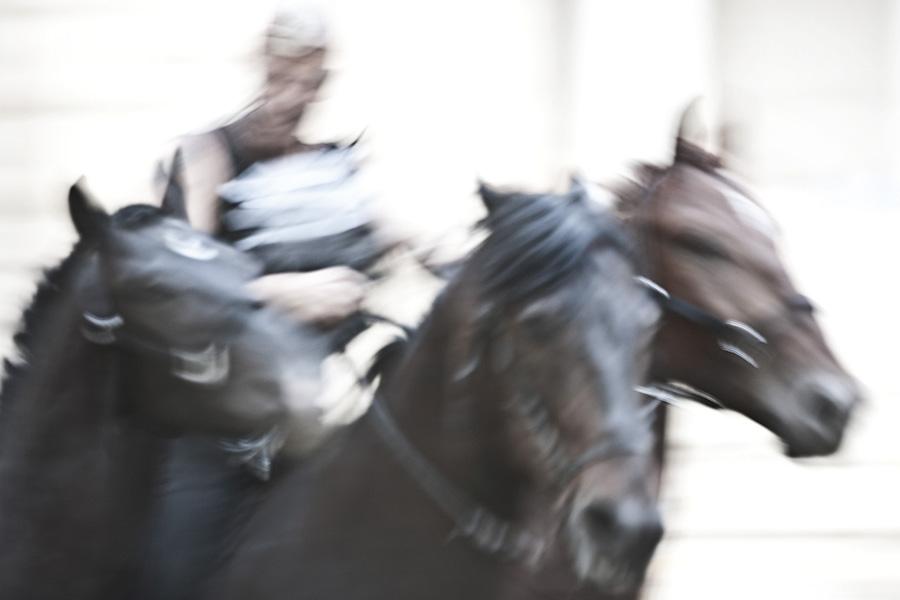 """Saga. """"Un teatro di uomini e cavalli è il restauro di un'opera d'arte che custodiamo, offrendola al futuro"""". Foto: Alessandra Calo"""