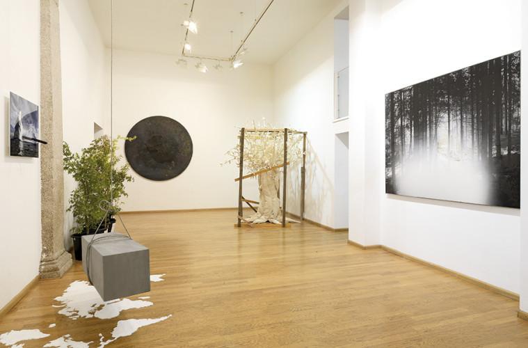 Urpflanze, la natura dell'idea, veduta della mostra. Foto: Studio Vandrasch