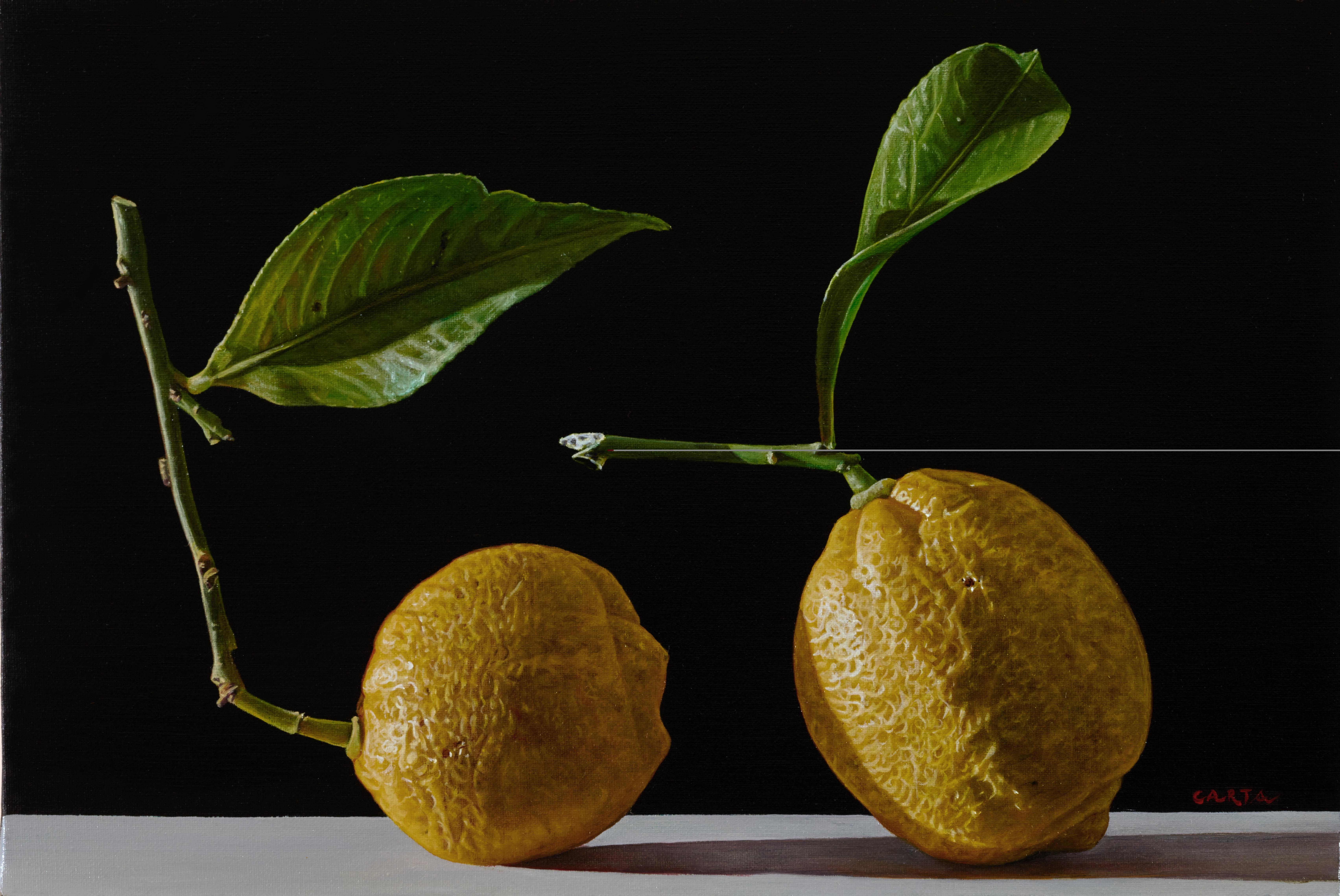 Giuseppe Carta, I limoni, 2015-2016, olio su tela cm 20x30 (5)