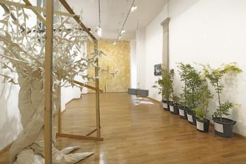 Urpflanze. La natura dell'idea, veduta della mostra, Nuova Galleria Morone, Milano