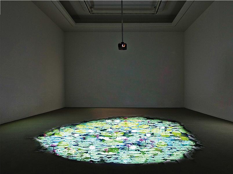 Michelangelo Bastiani, Giverny V, 2013, videoproiezione interattiva. Courtesy: Aria Art Gallery
