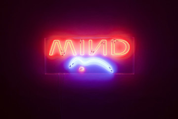 Lapo Simeoni | Mind The Gap, 2010, box metacrilato, neon, 67 x 161,8 x 7,2 cm, Courtesy the artist (72)