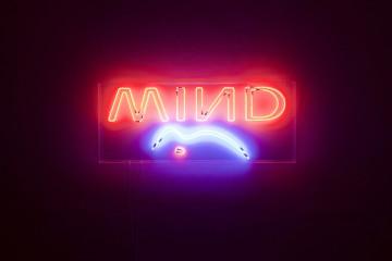 Lapo Simeoni | Mind The Gap, 2010, box metacrilato, neon, 67 x 161,8 x 7,2 cm, Courtesy the artist (72)