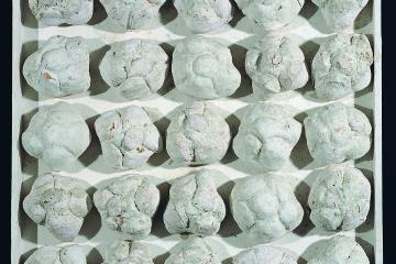 Piero Manzoni, Achrome, 1962 circa, panini e caolino, cm 45x45. Courtesy Fondazione Manzoni, Milano