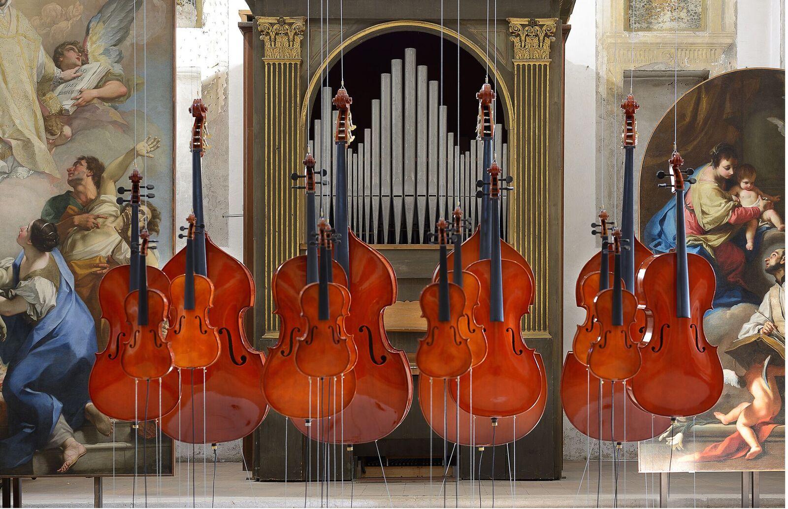 Roberto Pugliese, La finta semplice, 2016, 4 contrabbassi, 4 violoncelli, 4 viole e 4 violini, corde in Courtesy Studio la Città -Verona