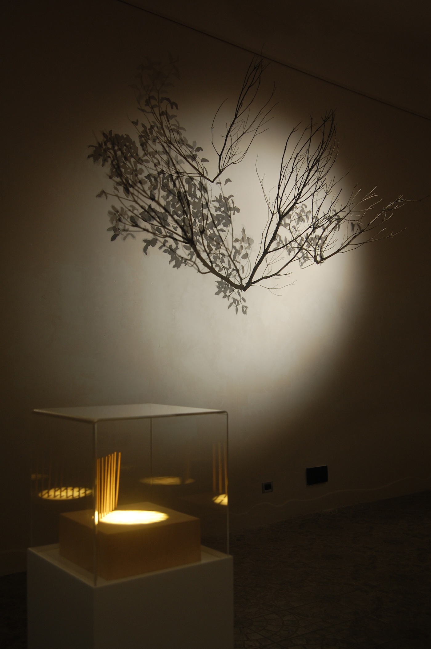 Alessandro Lupi, Lights and Shadows, veduta della mostra. Courtesy Guidi & Schoen, Genova