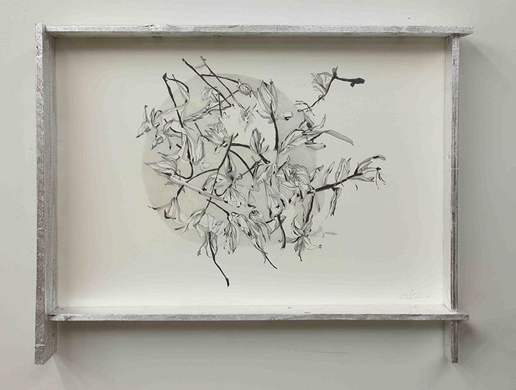 Fausta Squatriti, De rerum natura: dispersione, 2016, matita, pastelli su carta, legno, cm 79,5x102x10