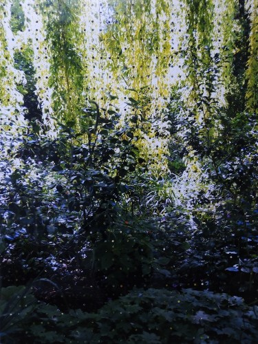 Valentina Perazzini, Le Jardin de la Clarté Parfaite, 2017, collage su stampa digitale, 76x100 cm