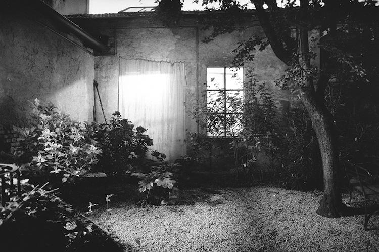 Enzo Obiso, veduta del giardino, 2013. Courtesy: l'artista