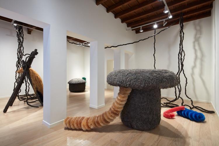 Pascali Sciamano, veduta del'installazione, Fondazione Carriero, Ph. Agostino Osio