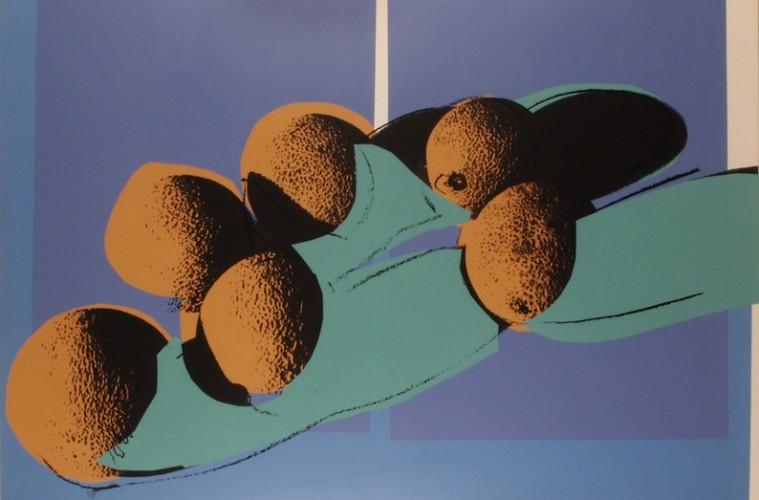Andy Warhol, Space fruit - Cantaloupe I, 1978, colori acrilici stesi con telai di seta su cartone, 76.2x101.6 cm, Collezione Fondazione Rosini-Gutman