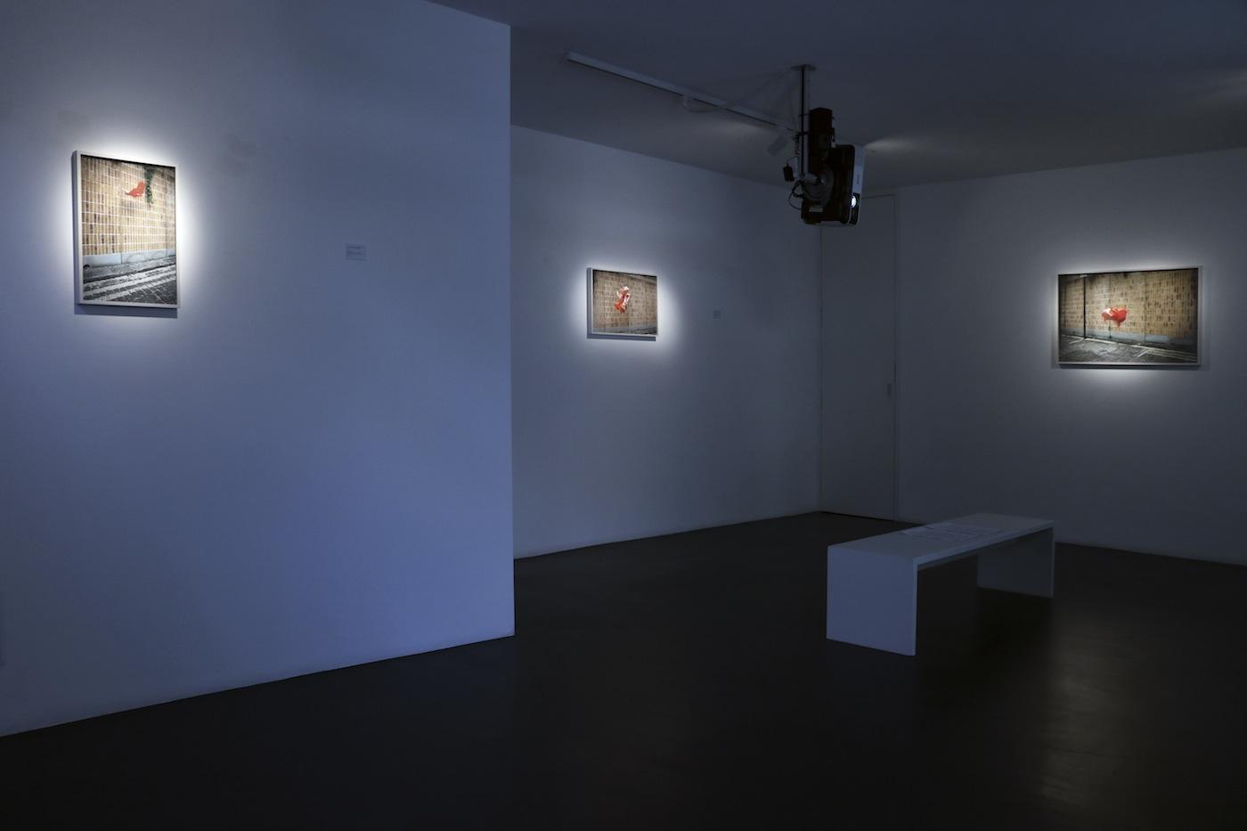 Exhibition view, Galleria Alessandro Casciaro, Bolzano, Foto: Sissa Micheli