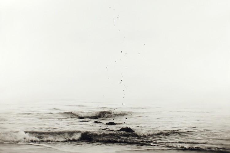 Ettore Frani, Semina, 2017, olio su tavola laccata, 100x100 cm Foto Paola Feraiorni