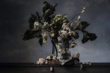 Christopher Broadbent, Flowers IV, 2013, Ed. of 3, 76x54 cm