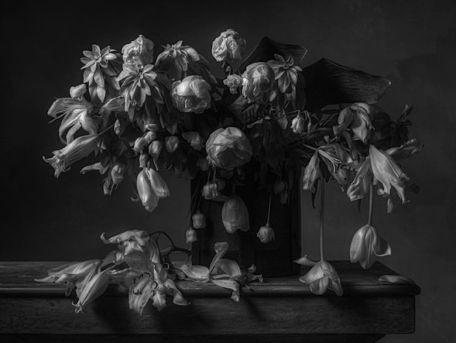 Christopher Broadbent, Flowers XII, 2013, Ed. of 3, 76x54 cm