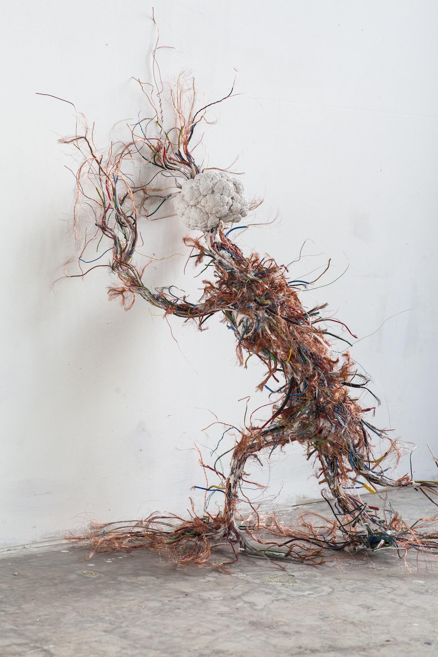 Krištof Kintera Evolution Revisions, 2015/2016 Collezione Maramotti, veduta di mostra / Collezione Maramotti, exhibition view. Foto: Dario Lasagni