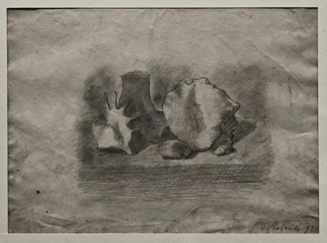 Giorgio Morandi, Natura morta, 1921, matita su carta, 20.5x28 cm, Fondazione Spadolini Nuova Antologia, Firenze