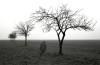 pietro-bandini-senza-titolo-2003-fotografia-su-pellicola-analogica-bn-su-carta-cotone-cm-80x120-copia