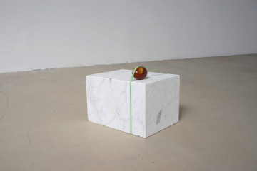 Stefan Milosavljevic, Top on Top, Ass on Ass (Installation View), 2017