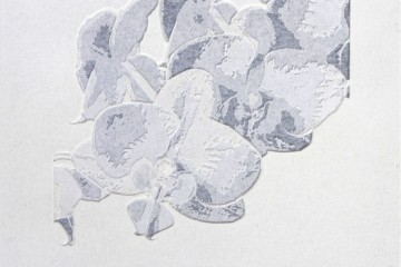 Giorgio Tentolini, Nipponismi (5), 2017, serie di 7, carta pergamena intagliata e sovrapposta a fondale nero, 21x21 cm ciascuna