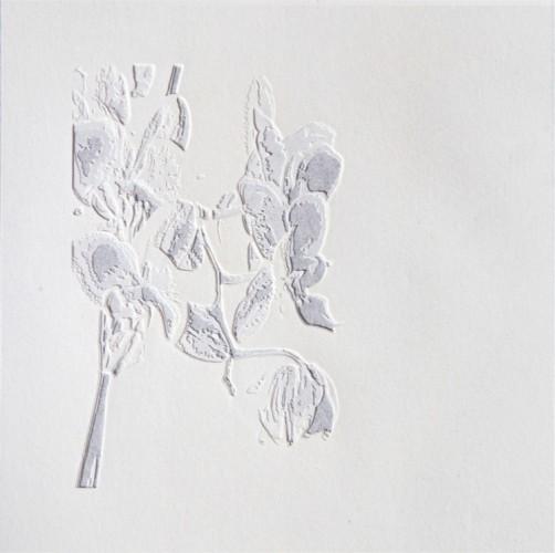 Giorgio Tentolini, Nipponismi (8), 2017, serie di 7, carta pergamena intagliata e sovrapposta a fondale nero, 21x21 cm ciascuna