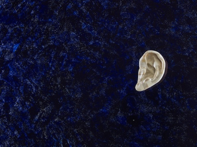 Jan Fabre, Untitled (Bone Ear), 1988, detail, glass, human bones, Bic ink, 180x250 cm Photographer Pat Verbruggen Copyright Angelos bvba