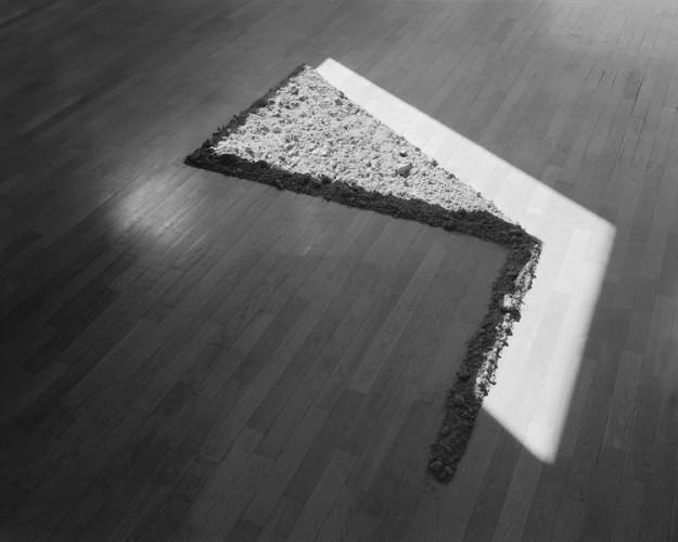 Marco Maria Zanin, Maggese II, 2016, dittico, stampa fine art su carta cotone, 40x60 cm ciascuno