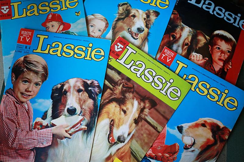 Fumetti degli anni '60 - '70 tratti dalla serie televisiva Lassie. Collezione Museo Nazionale del Cinema