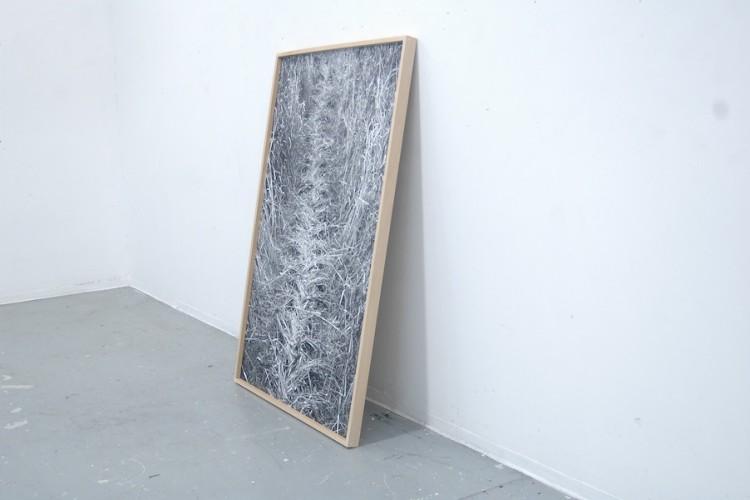 Béatrice Boily (Repentigny, Québec, Canada 1994), French Braided Earth, 2016, inject print su carta baritata, 180x120 cm, edizione 2/2