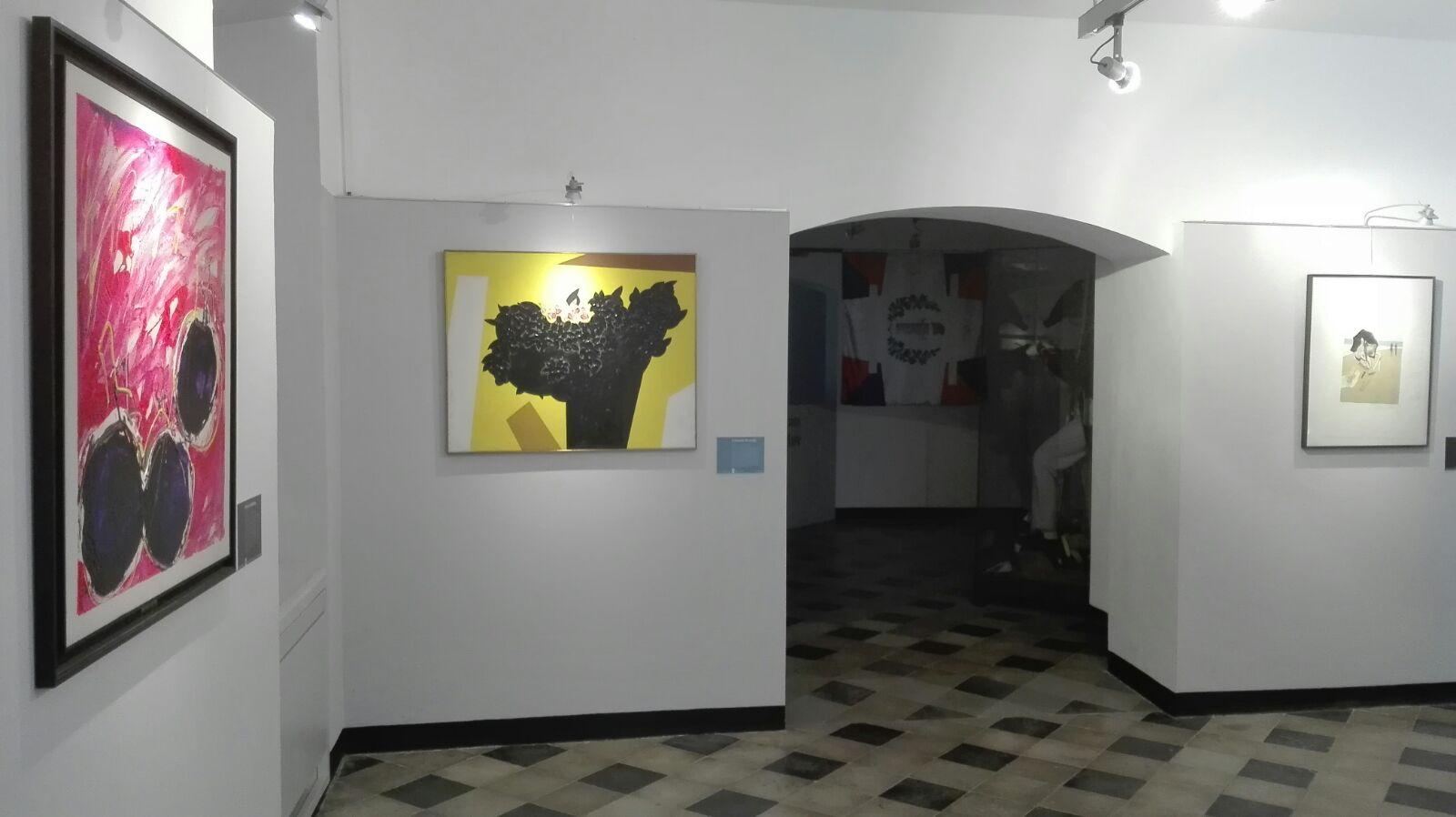 Veduta Collezione Bianchi, Museo Perrando, Sassello
