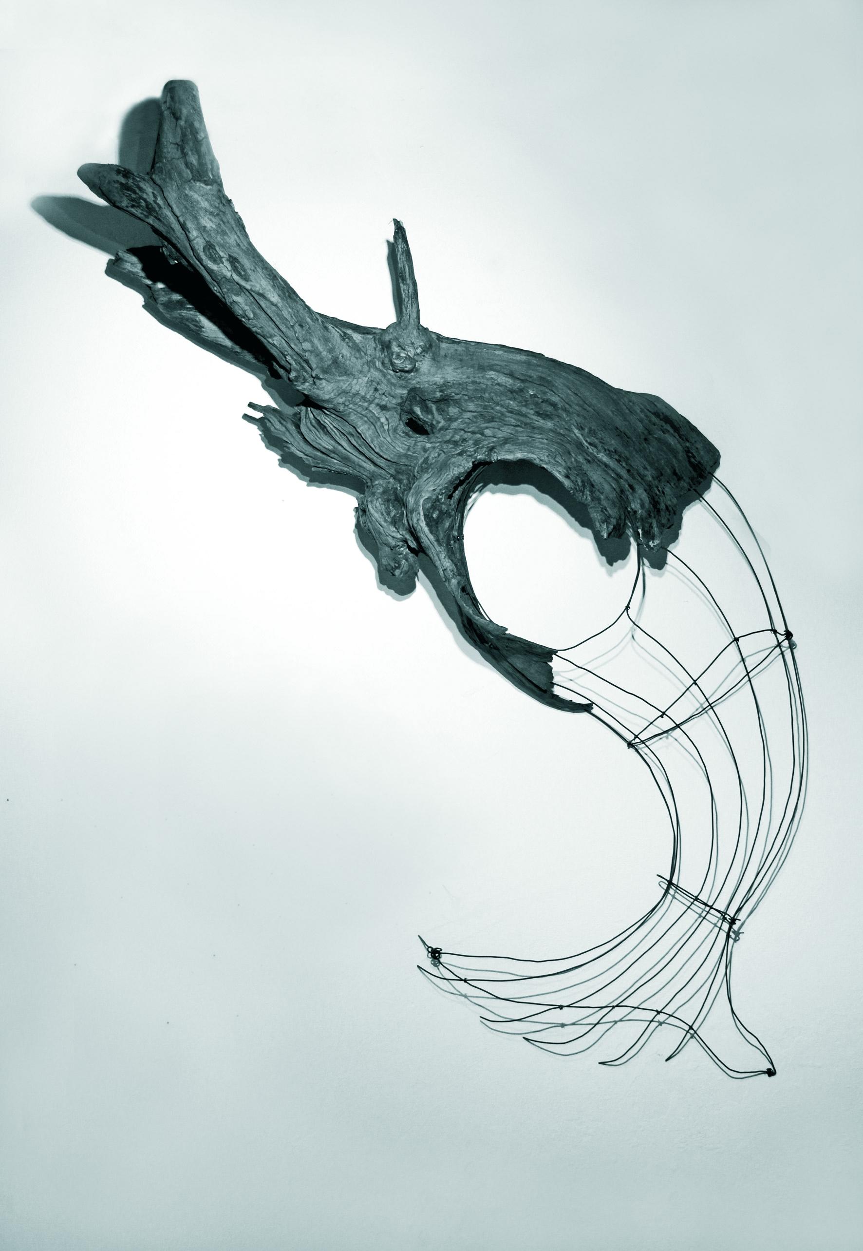 Massimo Ferrando, Creatura dell'abisso
