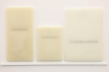 Elena Modorati, La biblioteca di Ur, 2013, ferro, cera, carta giapponese, 41x75 cm