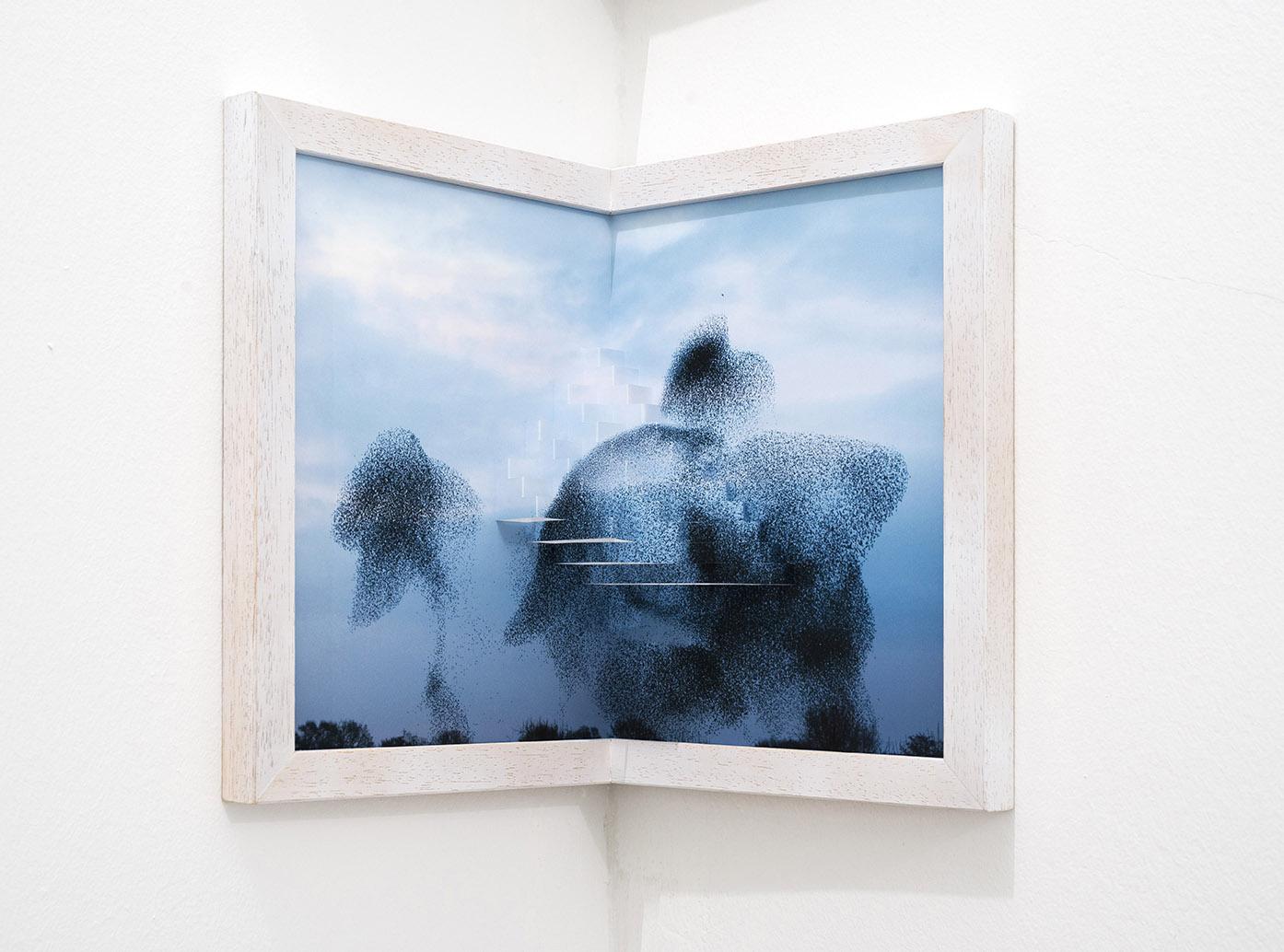 Silvia Camporesi Murmuration III, 2017, inkjet print su carta Photographica matt, kirigamicm 24 x 36Ed. 5 + 2 A.P.