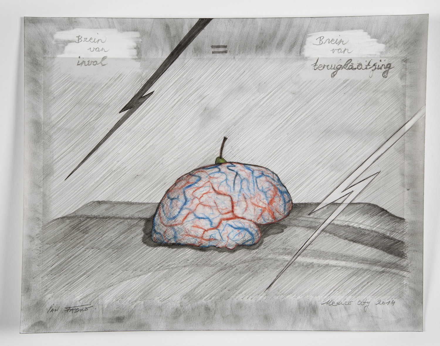 Jan Fabre, Brain of incidence = brain of reflection, 2014, HB pencil and colour pencil on photographic paper, 24x30.5 cm Photo Pat Verbruggen © Angelos bvba