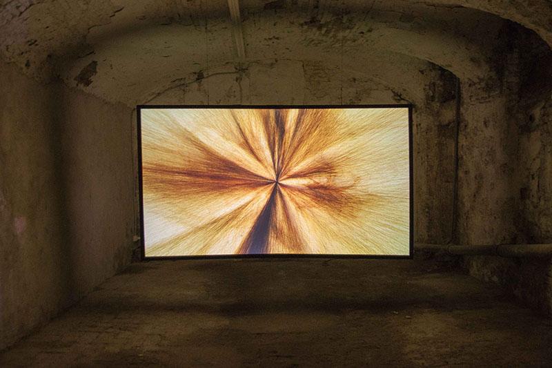 ADIACENZE @ Spazio Ferramenta - Andrea Familari, Untitled