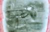 elisa-filomena-levitazione-cm-25x252017-nuovo
