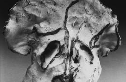 Tommaso Tosco, Come una fiamma violenta nei nostri cuori, 1987, 7 elementi, terracotta (950°-1200°), ossidi e smalti in monocottura, dimensioni variabili (particolare) Foto di Beppe Benenti