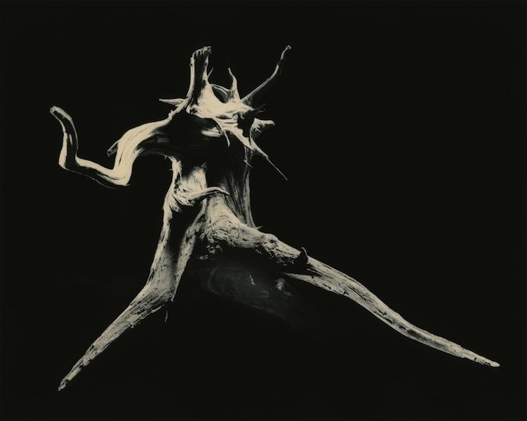 Yamamoto Masao, #3029, Dance W, 2012, stampa ai sali d'argento, incorniciata, 60x71cm