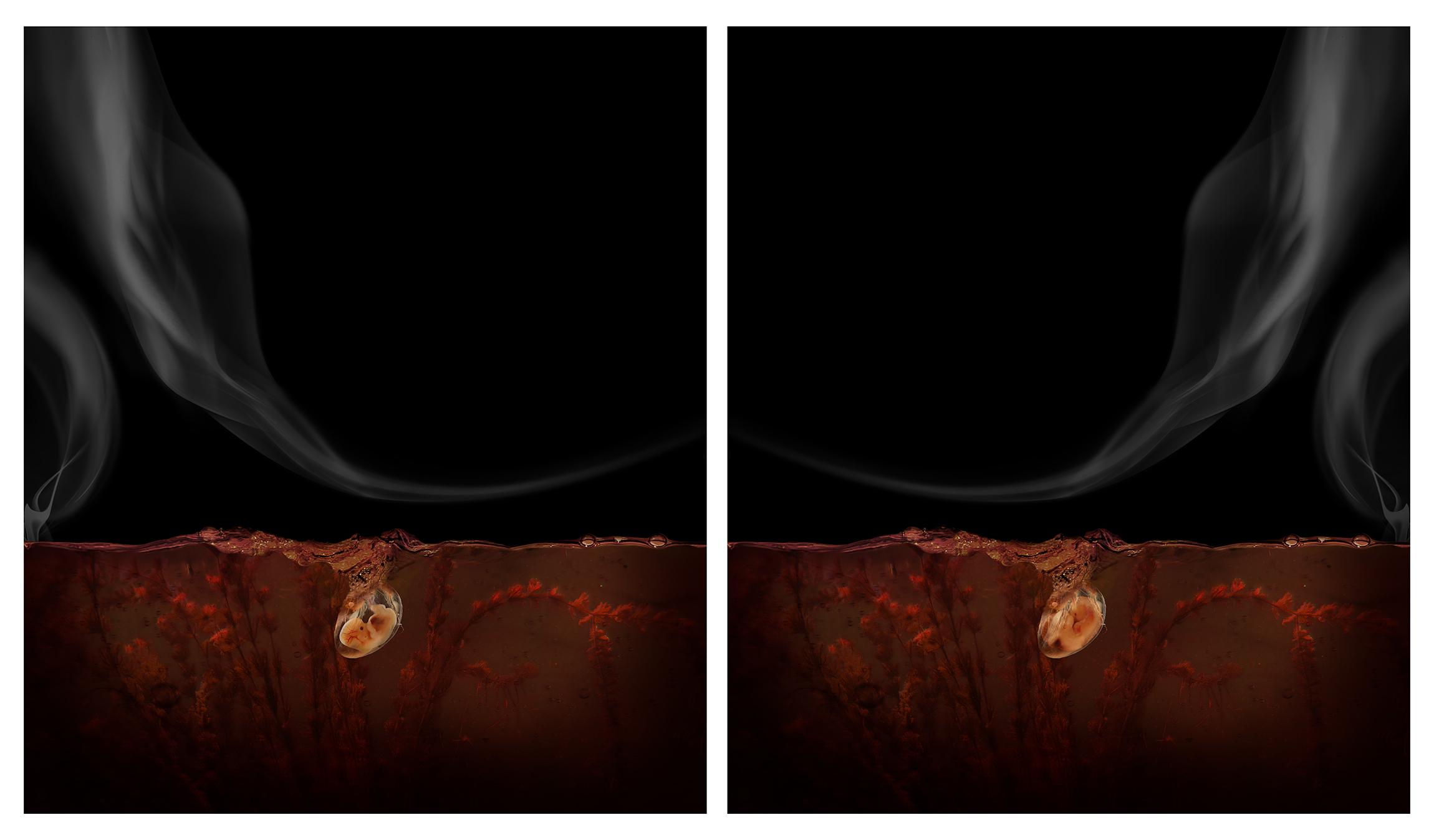 Aqua Aura, La notte gemella, 2017, stampa digitale su carta cotone su alluminio e cornice floccata, 150x260 cm (dittico)