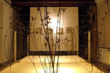 Jernej Forbici, LAST FLOWER, installazione 610x210x140 cm, 2011 Foto M. Vicari