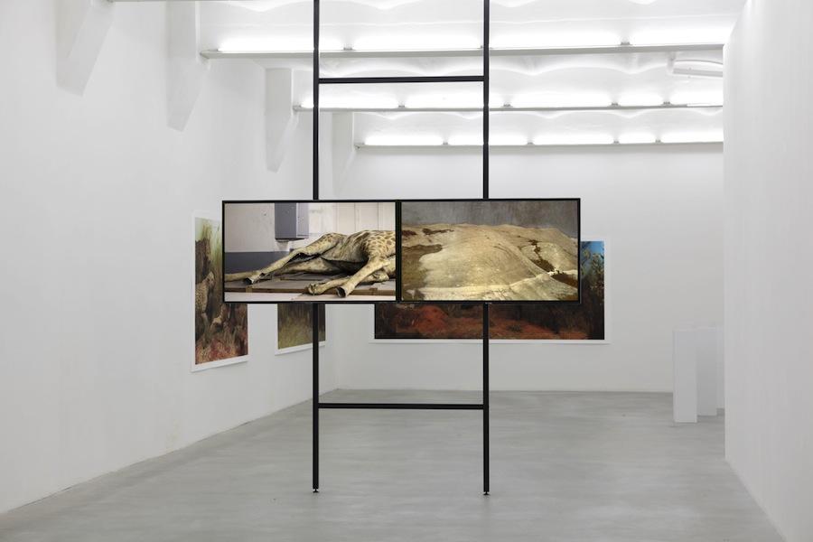 Katarina DzjelarInto, The Interior, 2015, veduta della mostra presso SpazioA, Pistoia Courtesy l'artista e SpazioA, Pistoia