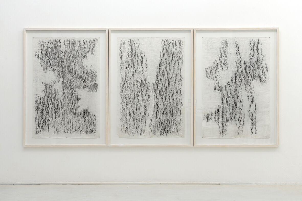 Giorgia Severi Restoring The World – BARKS – Bark#1 / Bark#2 / Bark#3 2013 trittico, frottage – carbone su carta / triptych, frottage – carbon on paper 150 x 100 cm ognuno / each foto Michele Alberto Sereni