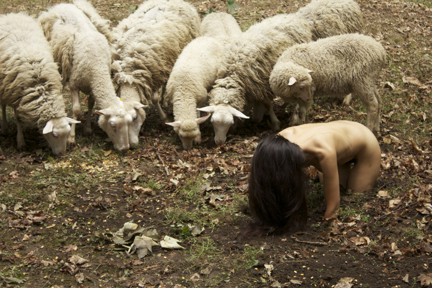 "Regina José Galindo, La oveja negra, 2014, video-6'21"", RAVE-East-Village-Artist-Residency-2014. Foto: Nico-Covre-courtesy-of-Prometeogallery-di-Ida-Pisani-Milano"